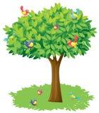 En tree och fåglar vektor illustrationer