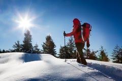 En trekker som går i snön, tar en vila för beundrar panoen Arkivbilder