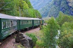 En tren a través de las montañas escandinavas Fotografía de archivo libre de regalías