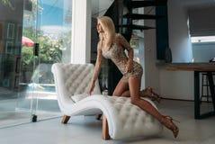 En trevlig flicka med ett härligt diagram i en kort skinande klänning vilar på en vit stilfull soffa i studion Stående av arkivfoto
