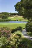 En trevlig sikt av en golfbana med en sjö Royaltyfri Bild