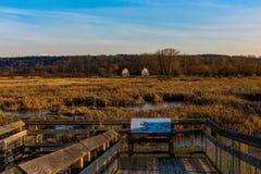 En trevlig solig dag som ut ser på vattnet Ett trevligt ställe för en vandring Arkivbilder