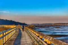 En trevlig solig dag som ut ser på vattnet En person som tar en vandring Royaltyfri Foto