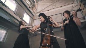 En trio av unga violinister spelar i ett oavslutat rum Kvinnorna spelar för kameran stock video