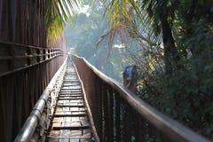 En tropisk bro i Laos Fotografering för Bildbyråer