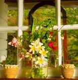 En tropisk bukett av kulöra blomningar Arkivfoton