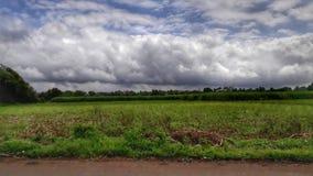 En tropisk himmel Royaltyfria Foton