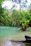En tropisk lagun i Laos royaltyfria bilder