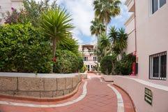 En trottoar mellan byggnader med blommor och palmträd royaltyfri bild
