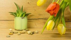 En tulpanbukett med en grön växt royaltyfri fotografi