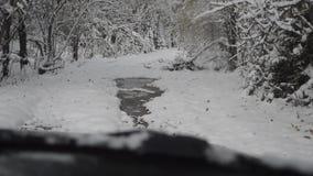 En tur till och med den Siberian skogen Taiga i aftonen, på enväg bil stock video