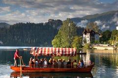 En turnera på Bled sjön Royaltyfri Fotografi