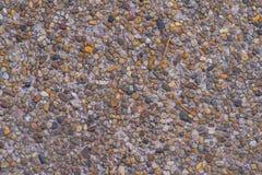 En tvättad sand Arkivfoto