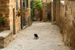 En typisk europeisk bystad med stenhus och förberedande stenar på gatan royaltyfri bild