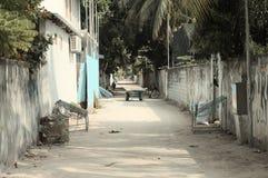 En typisk maldivian gata royaltyfri bild