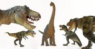 En tyrannosarie Rex Pack Menaces en Brachiosaurus Arkivbild