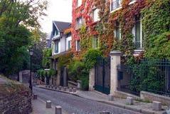 En tyst gata med hus Fotografering för Bildbyråer