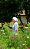 En ukrainsk bonde ansar hennes trädgård Royaltyfri Bild