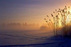 En un amanecer Foto de archivo libre de regalías