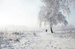 En un campo nevoso blanco un abedul solo en la helada y un hombre un hombre está nevando un invierno de la helada Imágenes de archivo libres de regalías