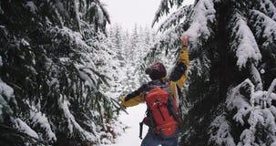 En un día de invierno duro en el medio del turista joven del bosque que viaja solamente explorando el árbol nevoso y el campo gra metrajes