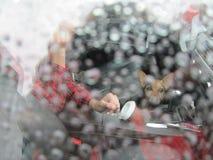 En un día lluvioso en el camino con su perro preferido fotografía de archivo
