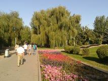En un parque Foto de archivo