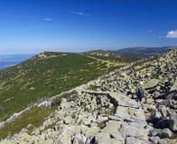En un rastro de montaña imagen de archivo