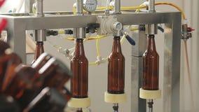 En una cervecería, una máquina llena las botellas de cerveza Un maquinista controla el proceso Primer almacen de metraje de vídeo