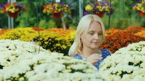 En una floristería hermosa, el cliente elige las flores, miradas y las huele Cuarto de niños de la flor almacen de video