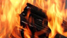 En una madera quema un fuego. almacen de video