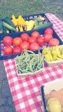 En una nueva luz en el mercado de los granjeros Imagen de archivo
