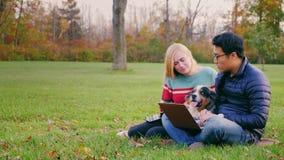 En ung asiatisk man som arbetar med en bärbar dator i parkera Nära en attraktiv kvinna och en hund som ser bildskärmen stock video