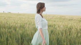 En ung flicka som ber i ett vetefält, en kvinna bland öron av havre som tycker om naturen och tackar guden, ett begrepp av religi arkivfilmer