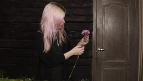 En ung flickablomsterhandlare gör ren en rosa nejlikablomma blommar variation Mörk backround arkivfilmer