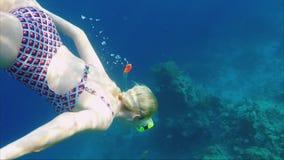 En ung kvinna dyker med en maskering och ett rör bland exotisk fisk och koraller Stor semester och dykning lager videofilmer