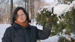 En ung kvinna i en parkera med gran på gatan, händer trycker på filialerna av träd som undersöker dem Säsongvinter stock video