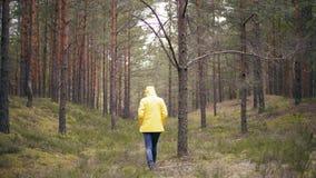 En ung kvinna i ett ljust gult omslag som går på den regniga skogen lager videofilmer