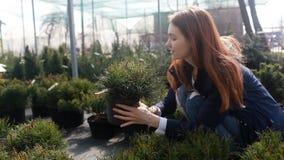 En ung kvinna väljer blommor för trädgården arkivfilmer
