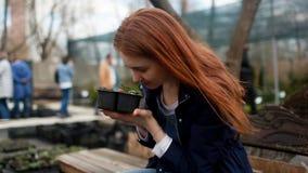 En ung kvinna väljer blommor för trädgården stock video