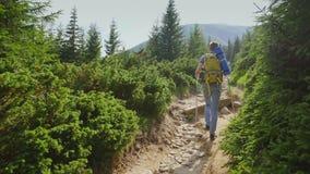 En ung man klättrar bergbanan till ett högt berg Levande ställe, berg som täckas med skogbaksidasikt lager videofilmer