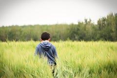 En ung pojke går i ett grönt kornfält royaltyfri foto
