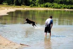 En ung pojke som spelar med hans hund i vattnet royaltyfri fotografi