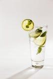 En uppfriskande citron- och limefruktspritser med minten Royaltyfri Fotografi