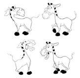 En uppsättning av burros för färgläggningdiagram för bok färgrik illustration Fotografering för Bildbyråer