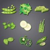 En uppsättning av den nya gröna grönsaken stock illustrationer