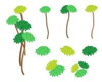 En uppsättning av det isometriska palmliljaträdet och Dracaenaväxten Arkivbild