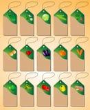 En uppsättning av etiketter med olika grönsaker Arkivbilder