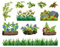 En uppsättning av Forest Element stock illustrationer