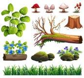 En uppsättning av Forest Element royaltyfri illustrationer